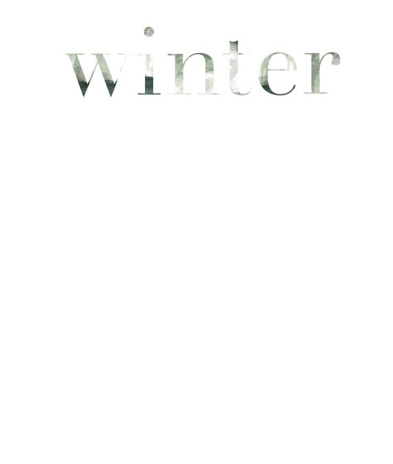 winter_birch-01